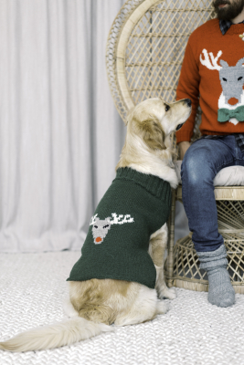 Reindeer sweater for dogs Novita Nordic Wool