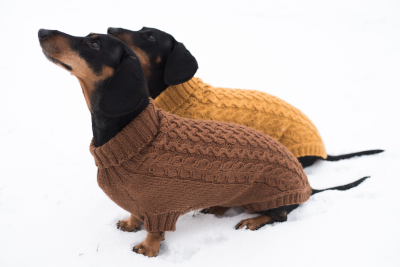 Novita 7 Veljestä: Cabled dog sweater