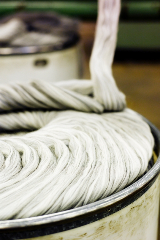 The Quality and Origin of Wool